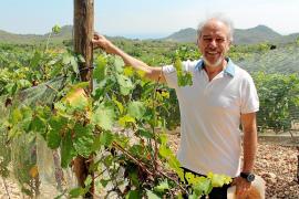 Castell del Sud: pasión por el vino