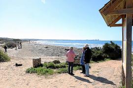 El Govern inicia el PORN de es Trenc con el reto de gestionar la retirada de alga