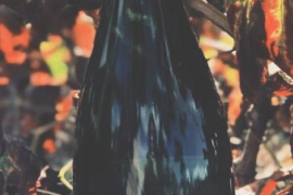 Un vino de Binissalem, entre los mejores espumosos de 2019