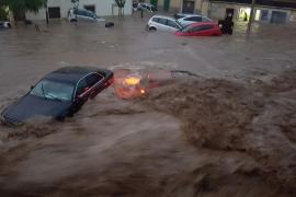 La Eurocámara declara la emergencia climática y reclama medidas urgentes para detenerla