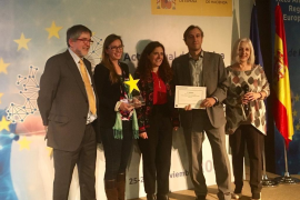 Premiada la aplicación de la UIB para controlar la avispa asiática