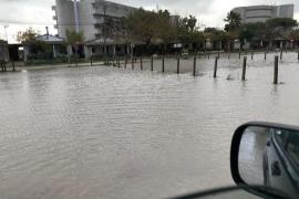 El temporal en Mallorca, en imágenes