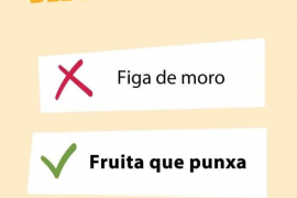 Meme de la campaña contra el racismo en el lenguaje del Ajuntament de Palma