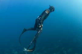 La prohibición de la pesca submarina en la reserva de sa Dragonera indigna al sector