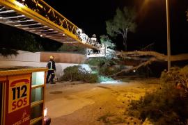 incidencias en Mallorca
