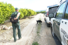 La Guardia Civil amplía la búsqueda de Marta Calvo con drones y helicópteros