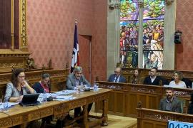 El pleno del Consell de Mallorca rechaza una moción de Vox que pedía banderas españolas en los colegios