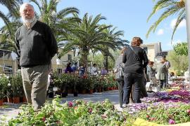 El alcalde recurre a la venta de papeletas para financiar la Fira de les Flors más concurrida