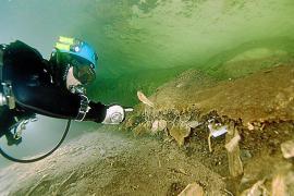 Montañas de más de diez metros de residuos fecales llenan la cueva de sa Genovesa