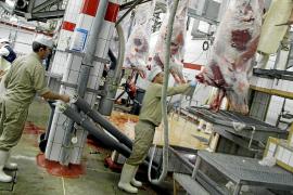 Dudas en el Pacte de Cort sobre si debe pagar la subvención al matadero