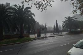 La niebla 'toma' Palma en Navidad