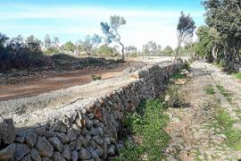 Més per Binissalem denuncia que las obras en el Camí Romà han seguido a pesar de la orden de paralización