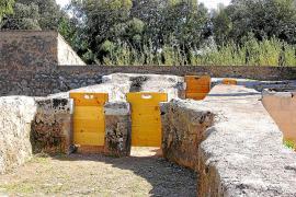 Inca, Selva y Búger piden la declaración BIC del sistema hidráulico de acequias y molinos