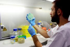 Detectan listeria en varios lotes de foie de una empresa de Guipúzcoa