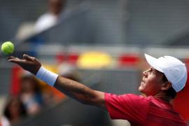 Federer y Berdych, los mejores en azul, lucharán por el título