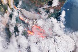 Los incendios en Australia arrasan casi 30 veces la superficie de Mallorca