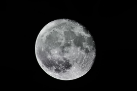 Un millonario busca novia para viajar juntos a la luna