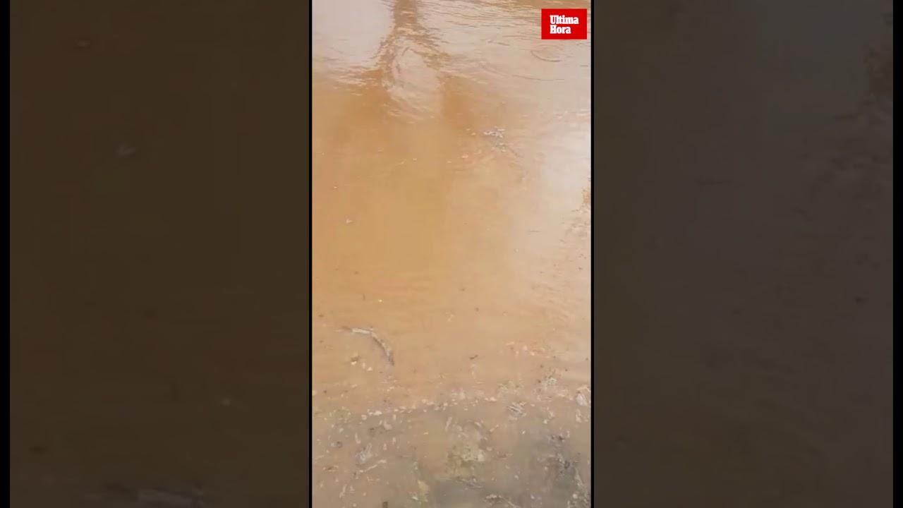 Los efectos de la tormenta se hacen notar en Sant Llorenç