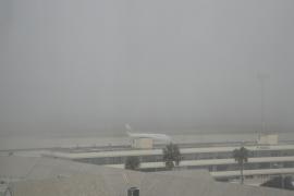 Cancelan un vuelo de Palma a Alicante y redirigen dos más por la borrasca Gloria