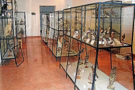 El Ajuntament relanza el Museu Regional para promocionar el turismo cultural