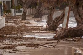 El PP pide declarar como zonas de emergencia los municipios baleares afectados