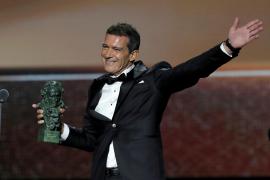 Antonio Banderas, Mejor actor protagonista en los Goya por 'Dolor y gloria'