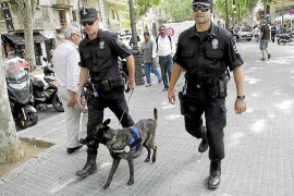 La Policía Local de Palma patrullará las calles con perros adiestrados