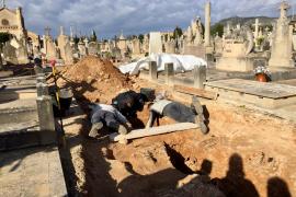 Confirman las identidades de cuatro cuerpos exhumados en las fosas de Llucmajor y Marratxí