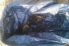 Matan a un perro y lo dejan dentro de una bolsa junto a un colegio de es Pont d'Inca