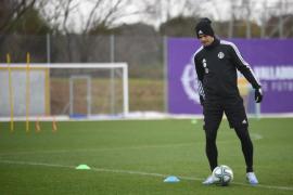 El Real Valladolid viaja a Mallorca sin Nacho ni Ben Arfa
