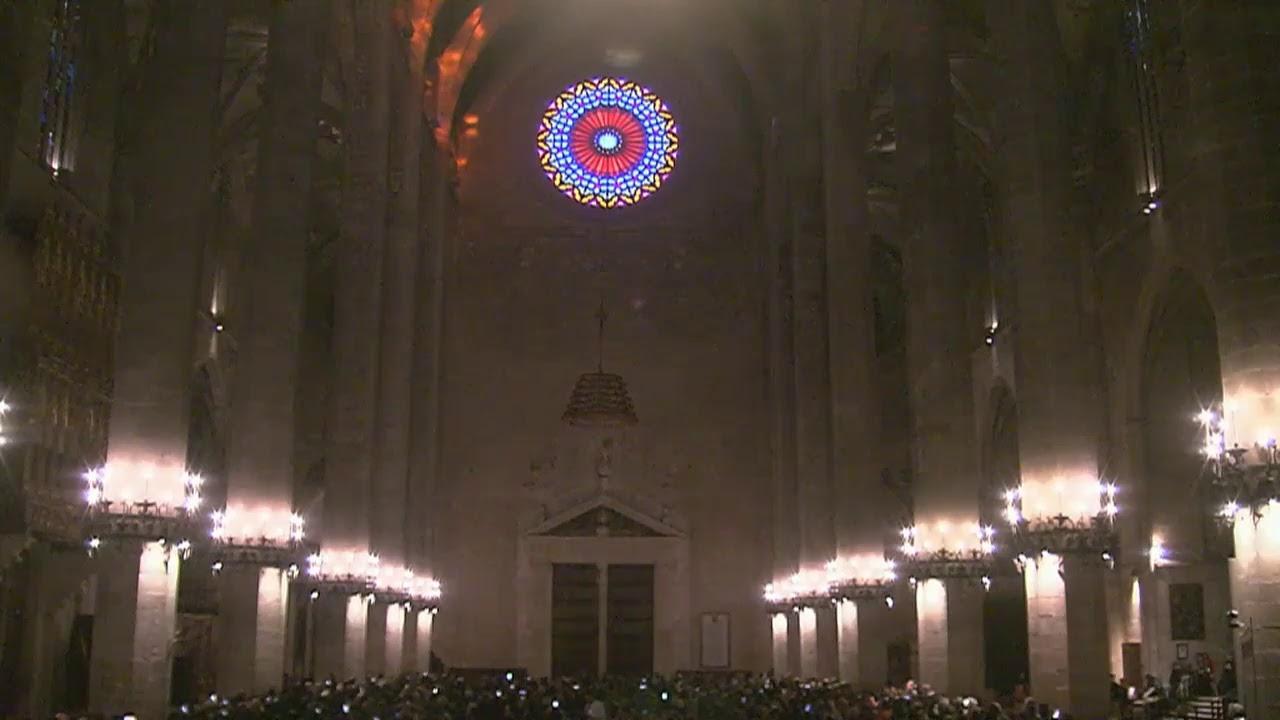 Así ha sido la 'Festa de la Llum' en la Seu