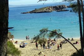 'Veranillo de invierno' en Mallorca