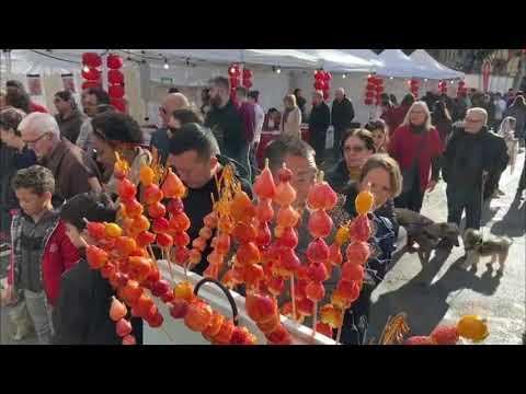 Multitudinaria celebración del Año Nuevo Chino en Pere Garau