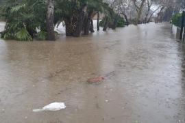 BBVA apoya a las familias y empresas afectadas por el temporal 'Gloria'