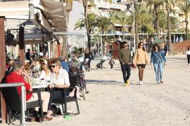 Febrero empieza con récords de temperaturas en Mallorca