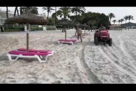 Alcúdia: playas seguras ante la COVID-19
