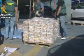 Siete detenidos por tráfico de drogas en Mallorca