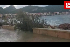 El temporal de viento causa daños en Andratx