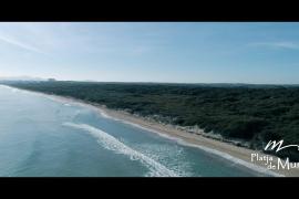 Muro, la apuesta firme y continuada por un sistema de gestión de playas sostenible y eficiente