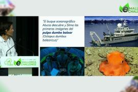 Aniol Esteban: «Invertir en la conservación del mar sale a cuenta»