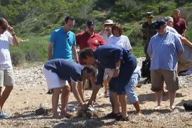 Suelta de tortugas en Cabrera