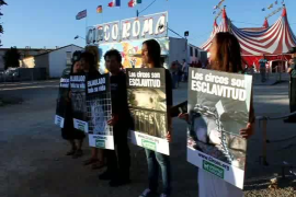 Protesta por los derechos de los animales