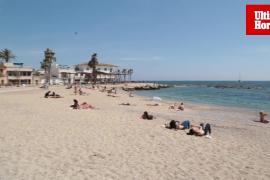 Carabelas portuguesas en playas de Mallorca