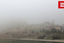 Miércoles de niebla en Mallorca