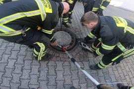 Rescate de una rata atrapada en una alcantarilla