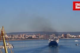 Contaminación Mediterráneo